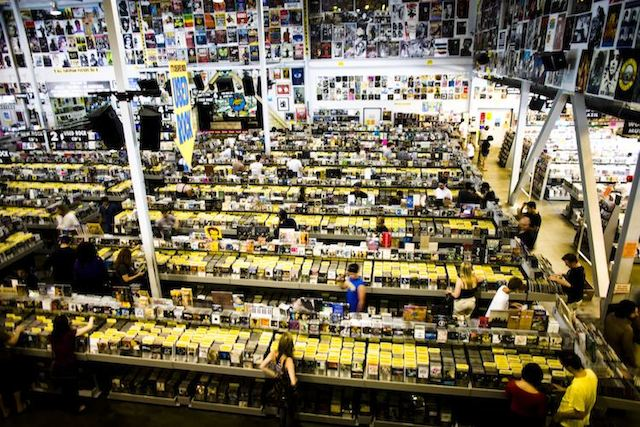 inside-amoeba-records