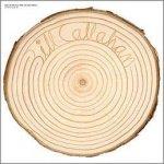 BILL CALLAHAN - Rough Travel For A Rare Thing A Live Album