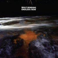 MALE BONDING - Endless Now