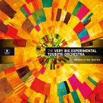 THE VERY BIG EXPERIMENTAL TOUBIFRI ORCHESTRA - Waiting In The Toaster